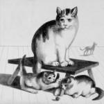 1984_4  Három macska - 13x12cm - Ezüst ceruza,papír
